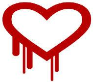 "What measures need to do against the ""Heartbleed"" bug"